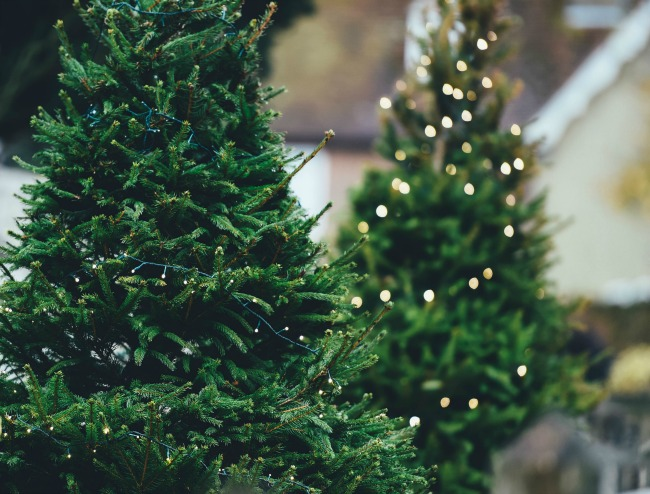 Dealing With Infertility During the Holidays